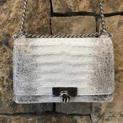 Closeup photo of Ombre Crocodile Chain Bag